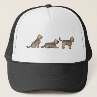 Sitz Platz Steh yorkshire Terrier Truckerkappe