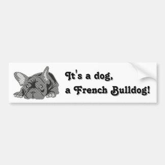 Sitzen der französischen Bulldogge Autoaufkleber