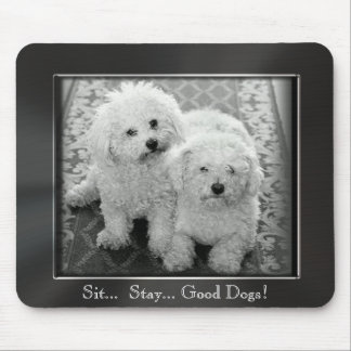 Sitzen Sie. Aufenthalt. Gute Hunde! Foto-Rahmen Mousepad