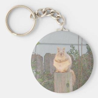 Sitzendes Eichhörnchen Schlüsselbänder