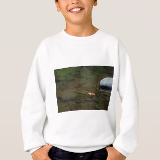 Siuslaw Fluss, Oregon Sweatshirt