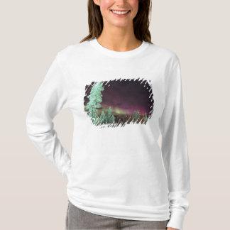 Skandinavien, Finnland, Lappland, Kakslauttanen, T-Shirt