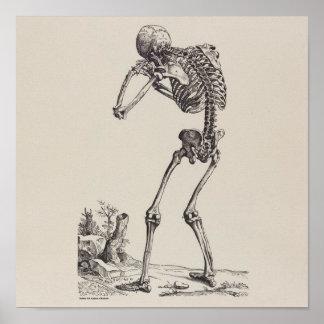 Skelett Poster