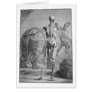 Skelett u. Nashorn Karte