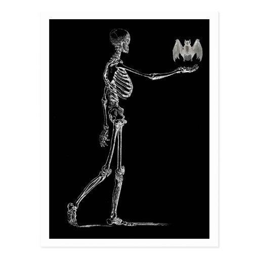 Skelett und Schläger-Postkarte