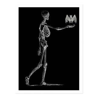 Skelett und Schläger-Postkarte Postkarten