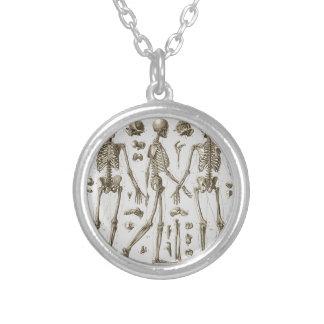 Skelette von der Brockhaus u. Efron Enzyklopädie Halskette Mit Rundem Anhänger