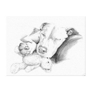 Skizze SchlafensPitbull Leinwanddruck