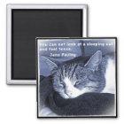 Sleeping cat quadratischer magnet