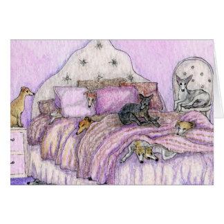 Sleepover - whippets und Windhunde reichlich! Karte