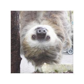 "Sloth 12"""" Druck der Leinwand-X12 Leinwanddruck"