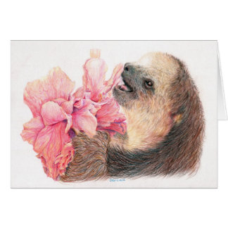 Sloth, der Hibiskus-Blume isst Karte