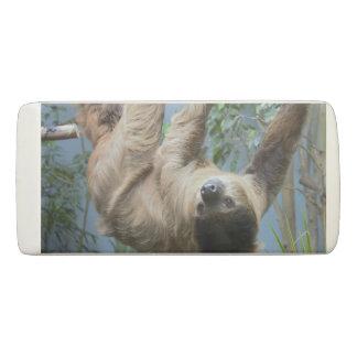 Sloth-Foto Radiergummi