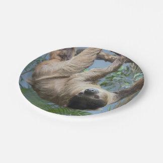 Sloth-PapierTeller Pappteller