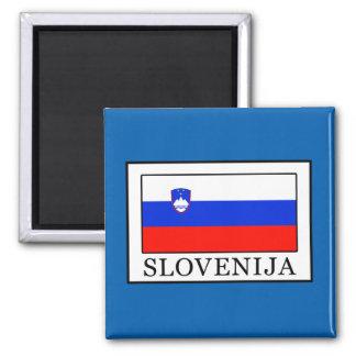 Slovenija Quadratischer Magnet