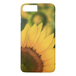Smartphone-Sonnenblume-Kasten iPhone 8 Plus/7 Plus Hülle