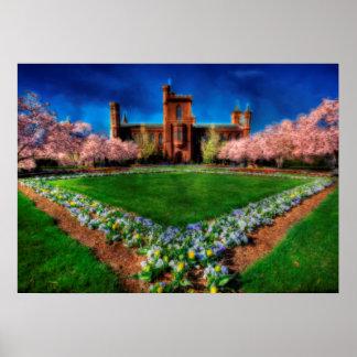 Smithsonian-Schloss-Garten-Kirschblüten Poster