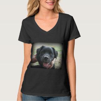 Smokey Posen für Kamera T-Shirt