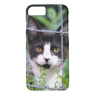 Smokings-Kätzchen Xena im Garten iPhone 7 Fall iPhone 7 Hülle