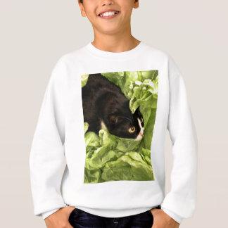 Smokings-Miezekatze, die im Seidenpapier sich Sweatshirt