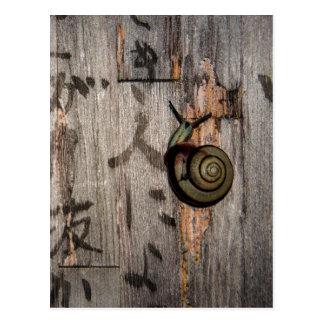 Snail mail Escargot auf asiatischer Kalligraphie Postkarte