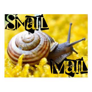 Snail mail postkarte