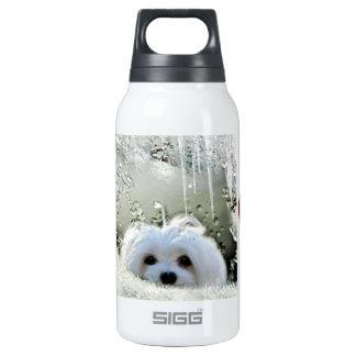 Snowdrop das maltesische isolierte flaschen