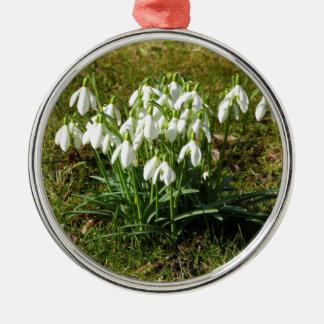 Snowdrops 02,2 (Schneegloeckchen) Rundes Silberfarbenes Ornament