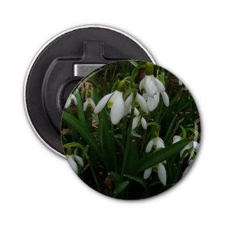 Snowdrops I (Galanthus) weiße Frühlings-Blumen Flaschenöffner