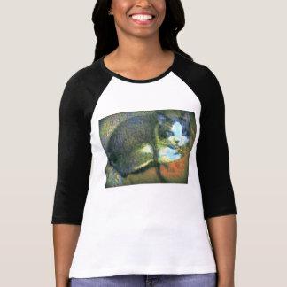 Snowshoe atemberaubender Kitty T-Shirt