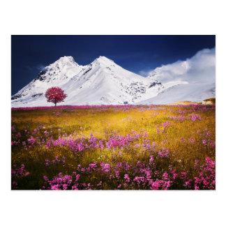 Snowy-Alpen-Postkarte Postkarte