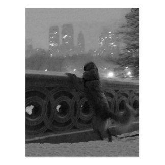 """""""Snowy-Ansicht von der Bogen-Brücke"""" Central Park, Postkarte"""