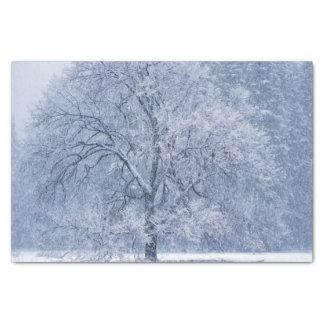 Snowy-Baum-Winter gefrorene Szene Seidenpapier