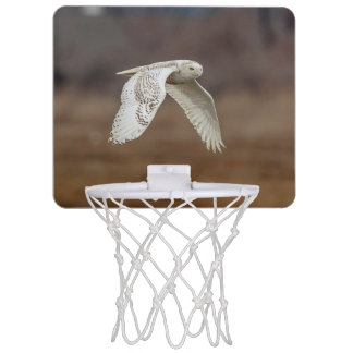 Snowy-Eule im Flug Mini Basketball Ring