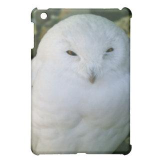 Snowy-Eule iPad Mini Hülle