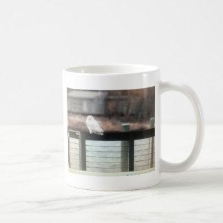 Snowy-Eule Kaffeetasse