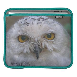 Snowy-Eule, Schneeeule iPad Sleeve