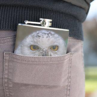 Snowy Owl, Schnee-Eule Flachmann