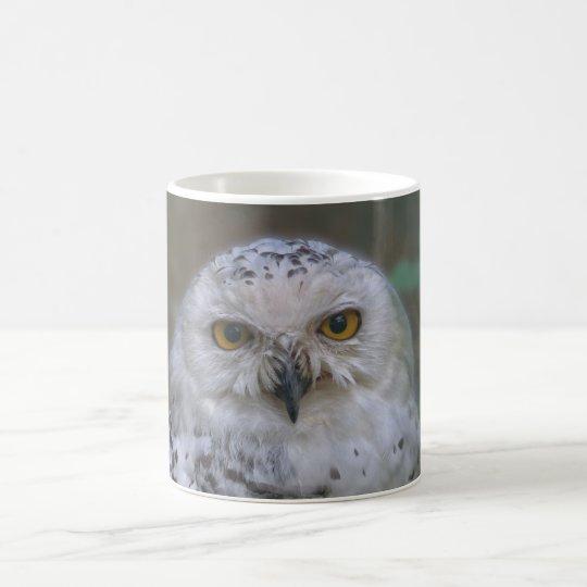 Snowy Owl, Schnee-Eule Kaffeetasse