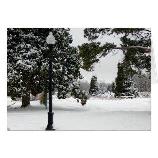 Snowy-Park Meme Gruß-Karte Grußkarte