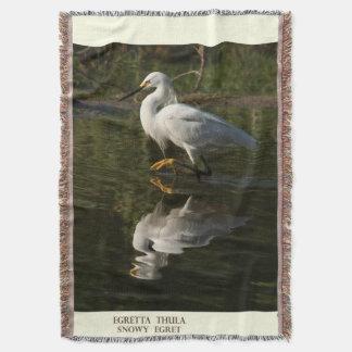 Snowy-Reiher-Vogel-Tier-Tier-Decke Decke