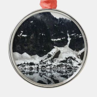 Snowy See-T - Shirt Silbernes Ornament