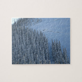 Snowy-Tage Puzzle