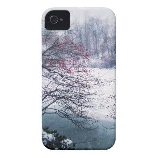 Snowy-Teich im Central Park iPhone 4 Hüllen