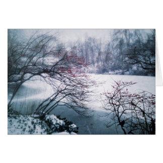 Snowy-Teich im Central Park Karte