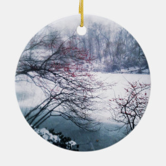 Snowy-Teich im Central Park Rundes Keramik Ornament