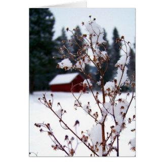 Snowy-Unkräuter u. rote Scheune Karte