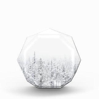 Snowy-Wald Acryl Auszeichnung