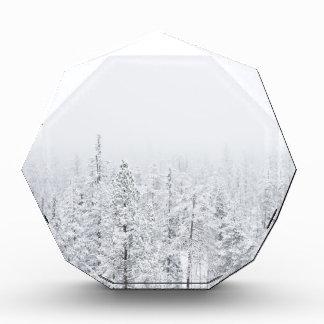 Snowy-Wald Auszeichnung