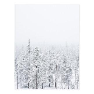 Snowy-Wald Postkarte